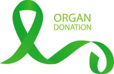 Organ Donation Saves another Life