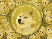 What Are Dogecoin And What Are The Things To Notice?